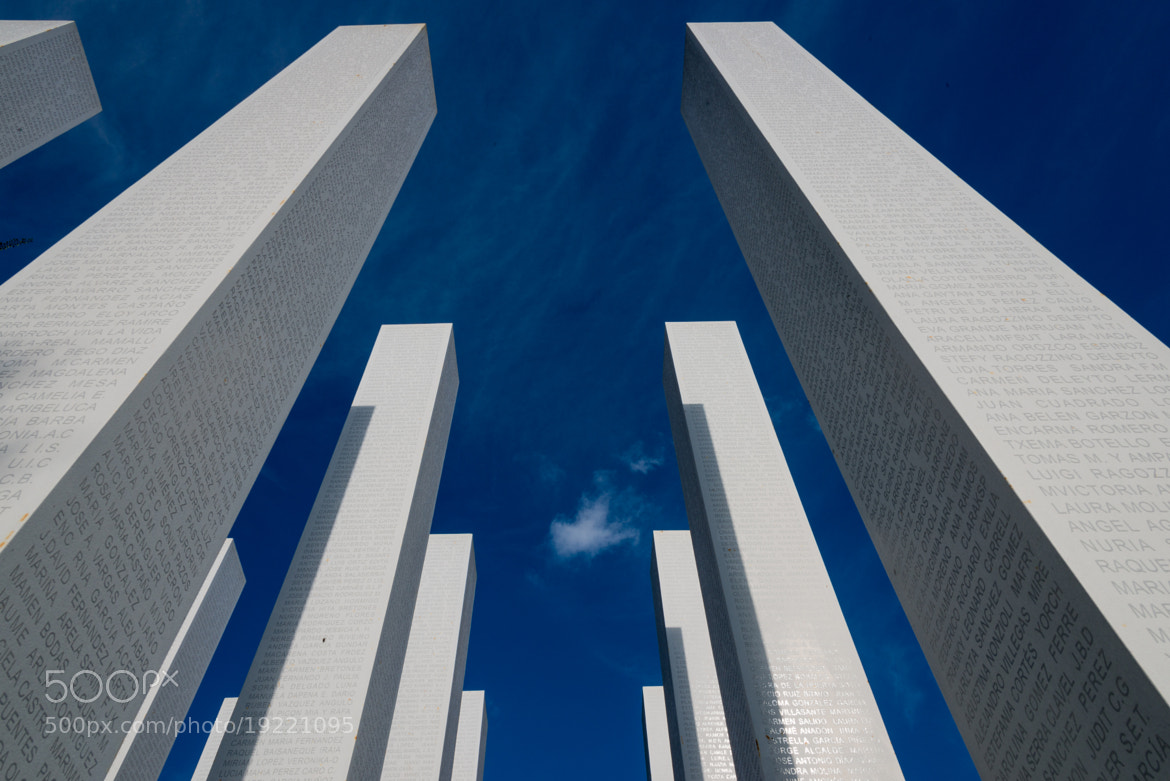 Photograph Reaching the sky by Jos Didden on 500px