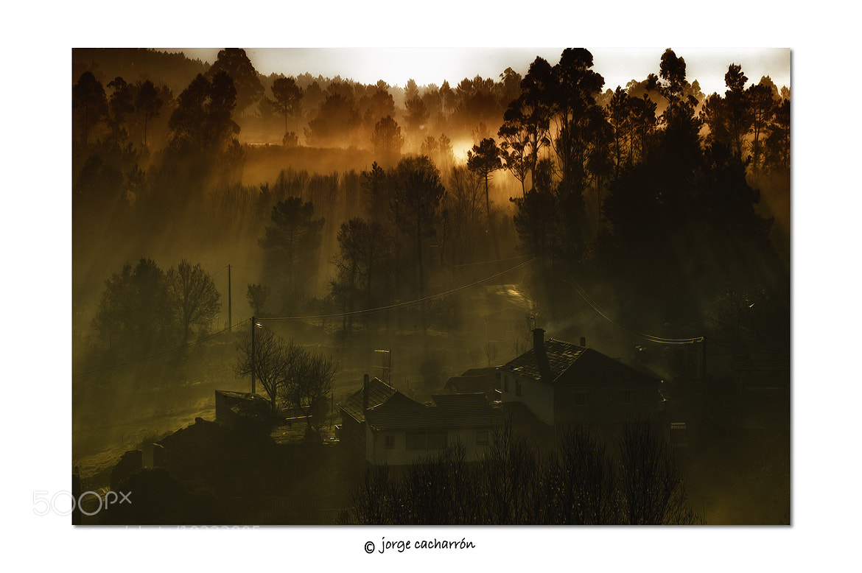 Photograph Nieblas by Jorge Cacharrón on 500px