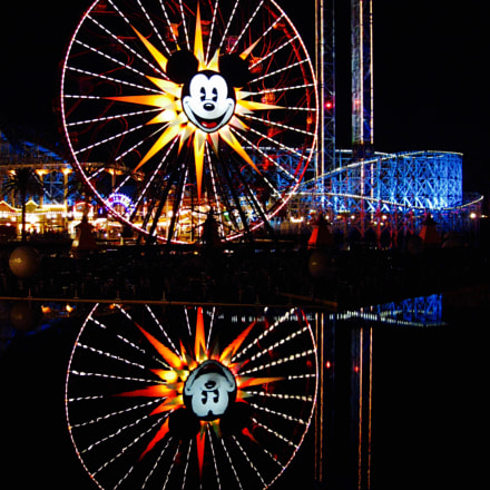 Mickey's Reflection, Canon POWERSHOT SD890 IS