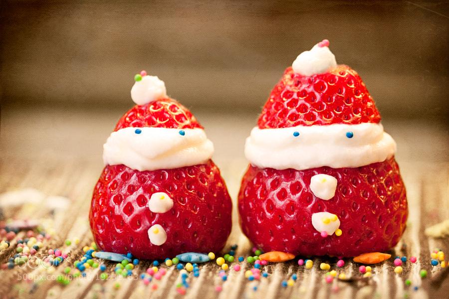 Photograph Santa Berries by Tetyana Kovyrina on 500px