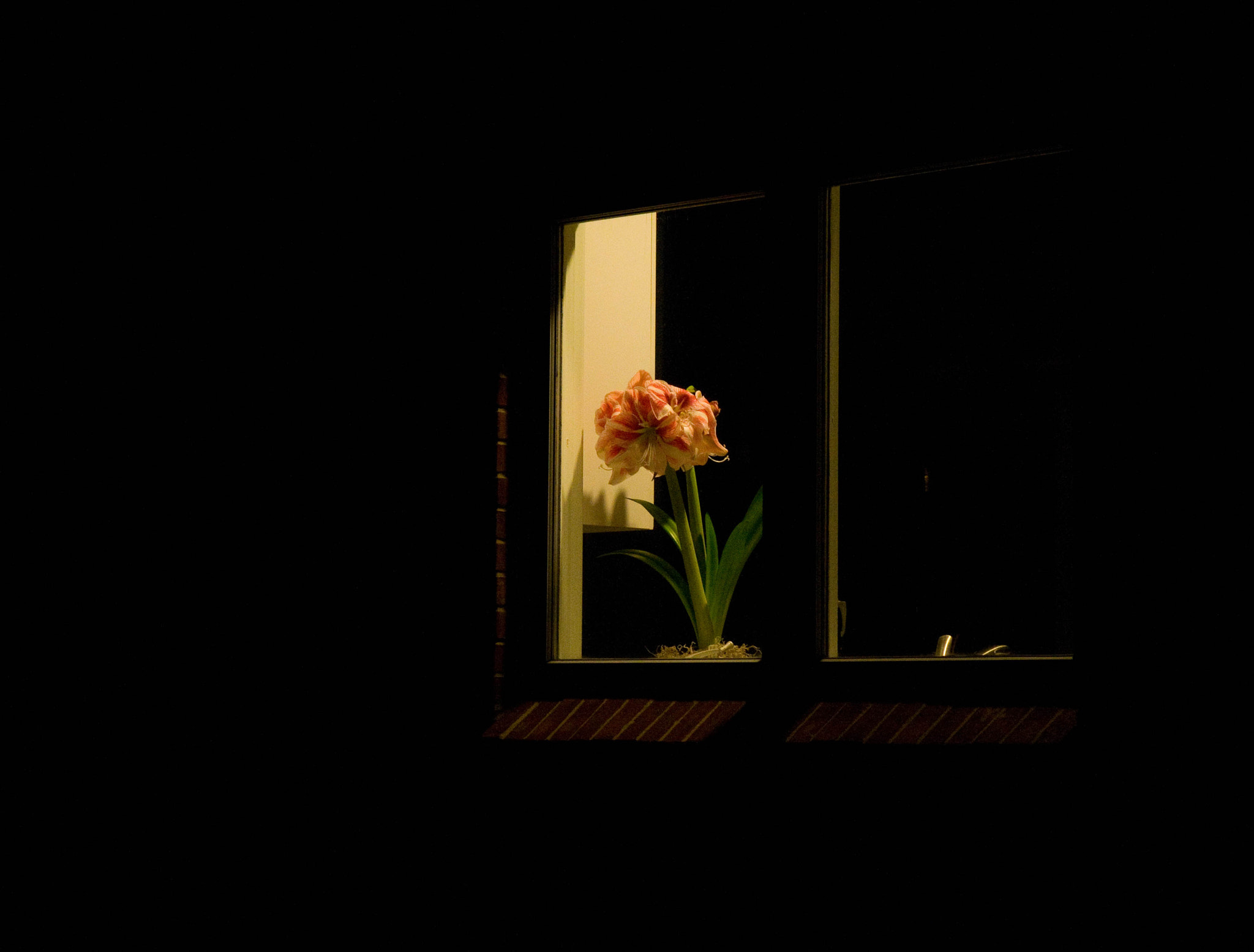 Photograph Ode to Hopper by lloyd doigan on 500px