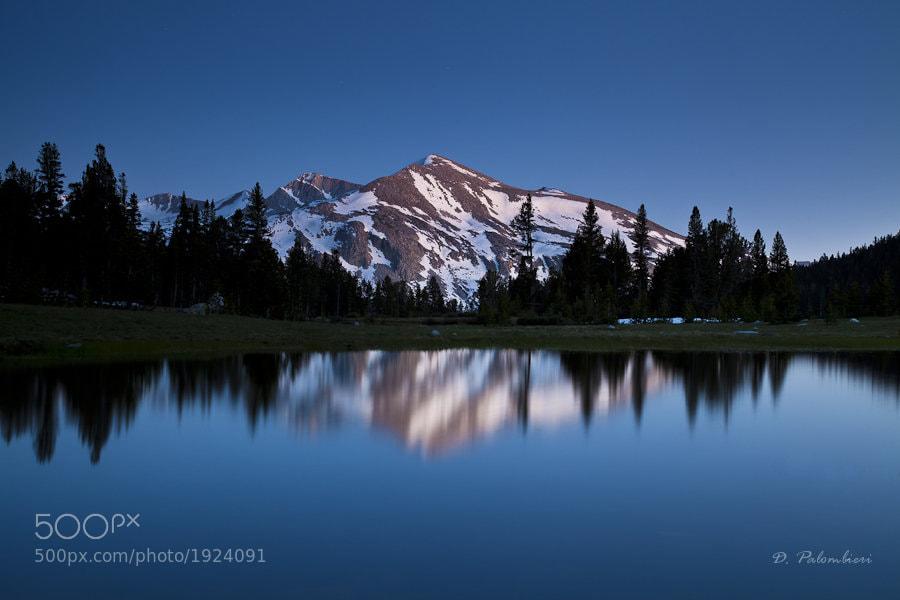 Photograph Mount Dana - Tioga pass entrance - Yosemite - CA by Dominique  Palombieri on 500px