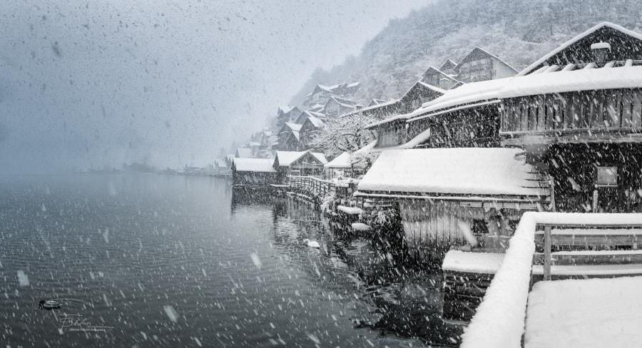 Winter, автор — Stefan Thaler на 500px.com