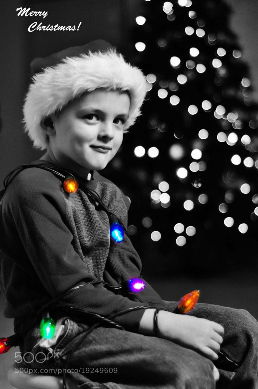 Photograph Merry Christmas  by Allison Davis on 500px