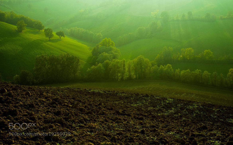 Photograph Le colline di Albinea by Michele Fornaciari on 500px