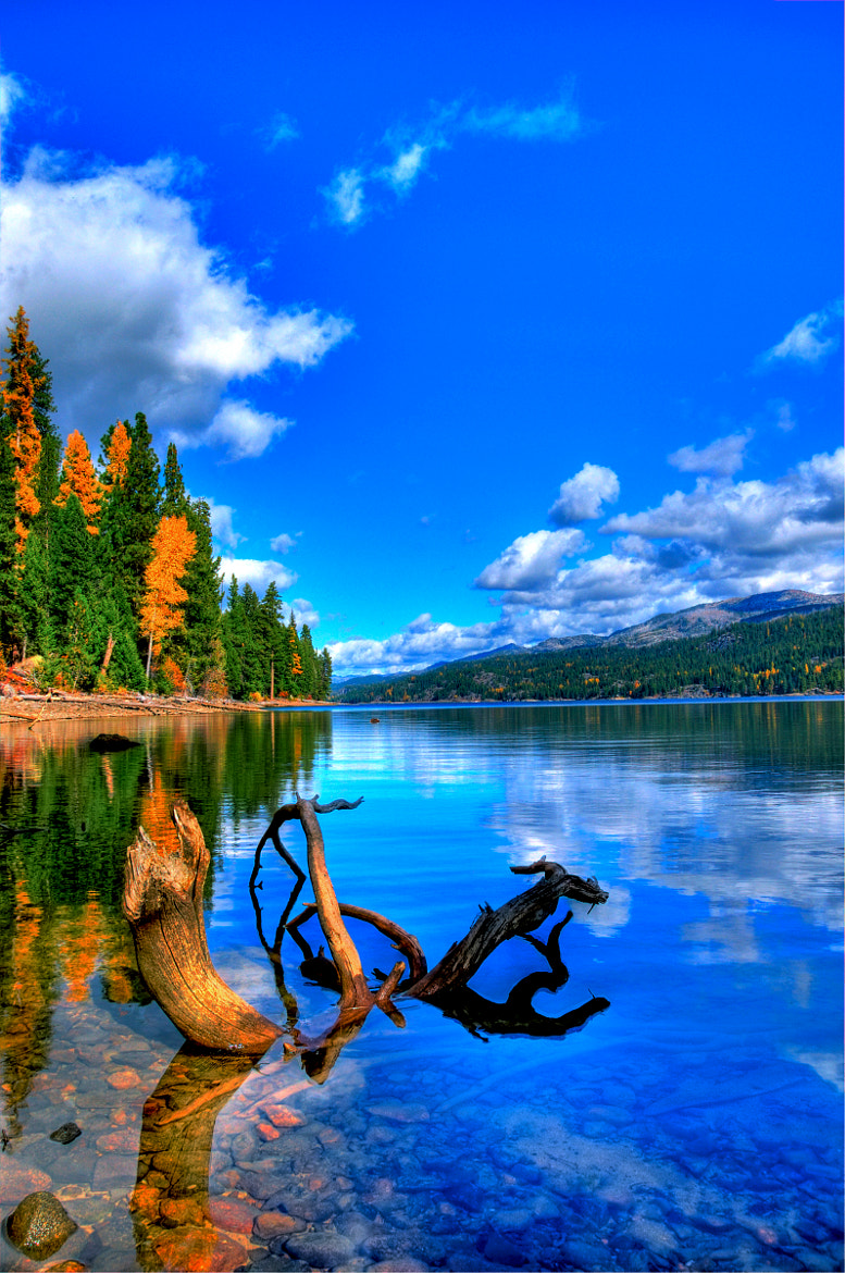 Photograph Huckleberry Bay, Payette Lake, McCall, Idaho by David Ryan on 500px