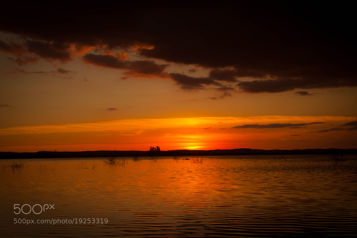 Photograph SunSet .. by Mohamed Hegazi on 500px
