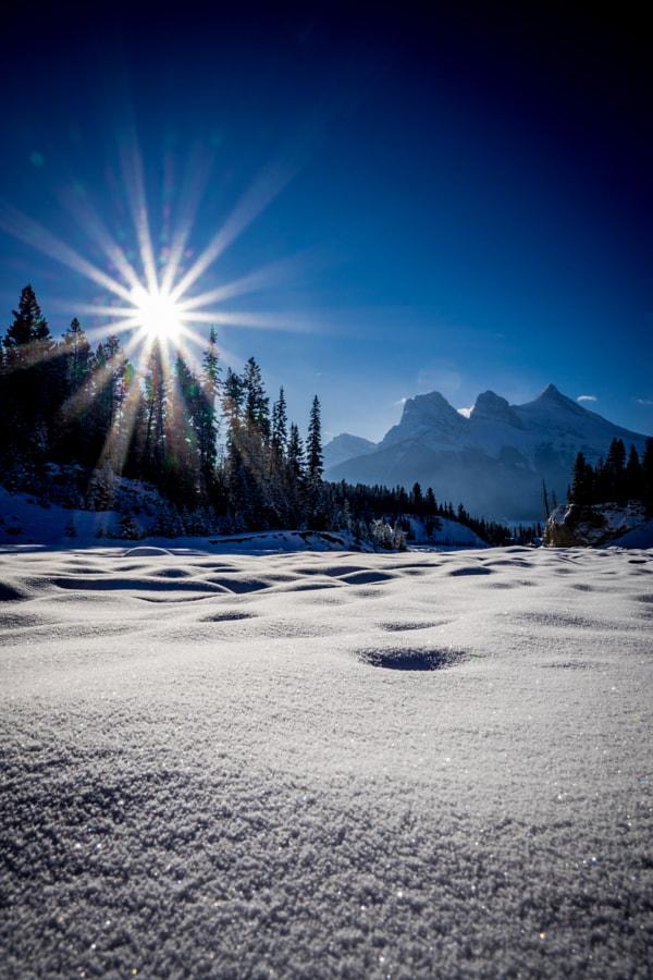 Winter down the Creek