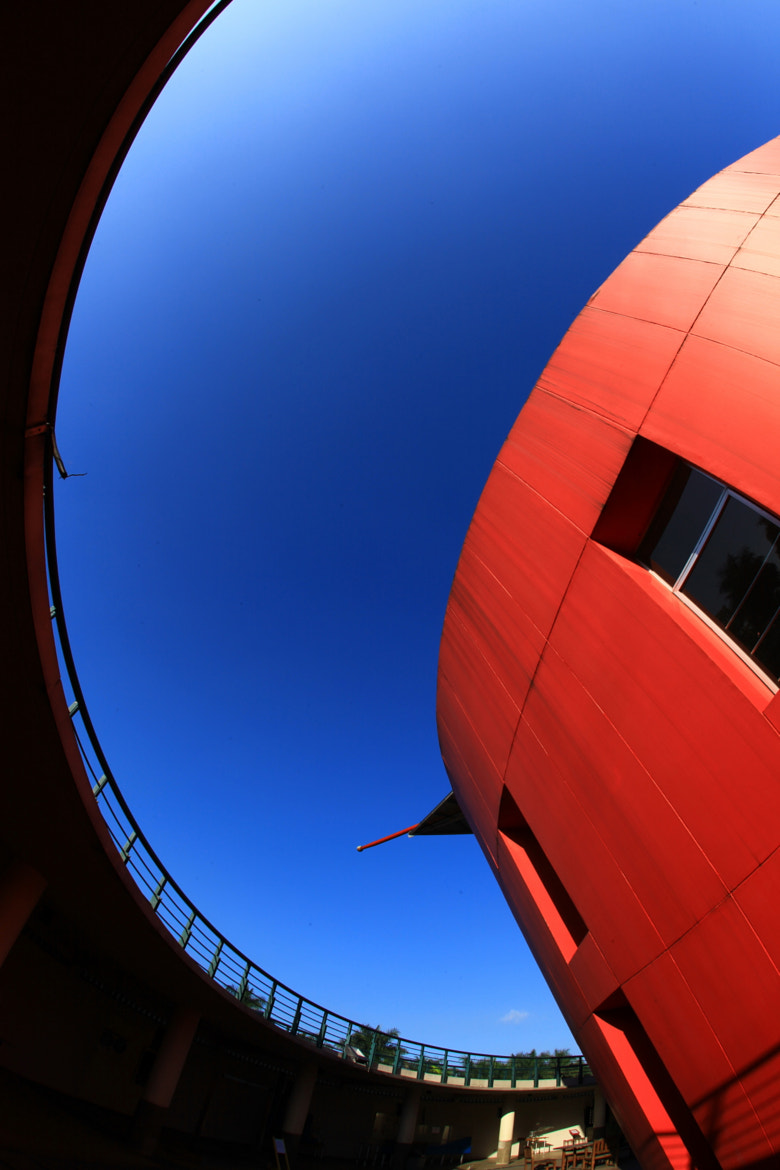 Photograph curves in archi by Narsiskus Tedy on 500px