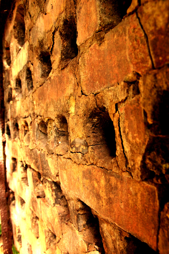 Photograph Bricks by Jéssica Magagnin ♥ on 500px