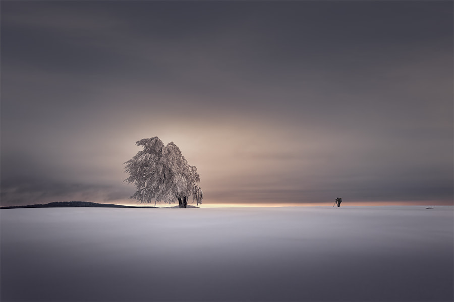 Lichtfänger by Andreas Bobanac on 500px.com