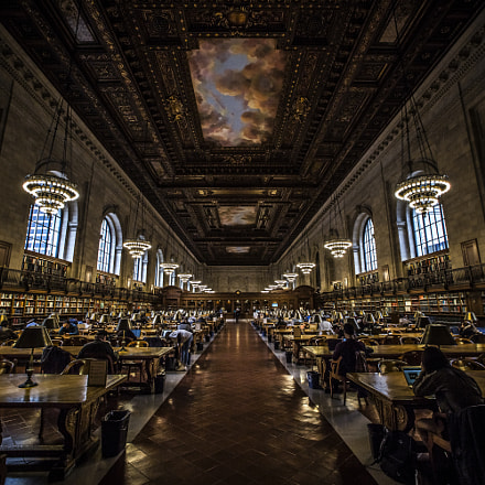 New York Public Library, Canon EOS 5D MARK III