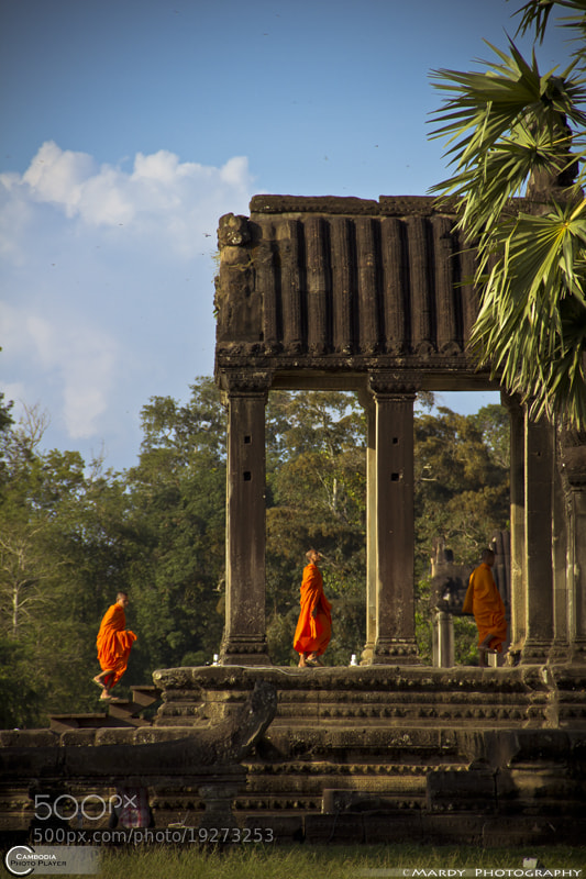 Photograph The Monk In the Column! by Mardy Photography on 500px