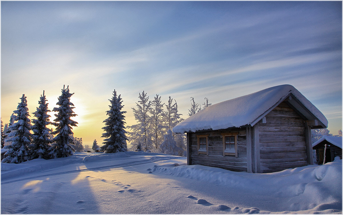 Photograph Winter's day ... by Valtteri Mulkahainen on 500px