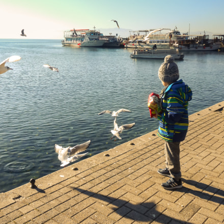 Child And Birds, Nikon COOLPIX S3300