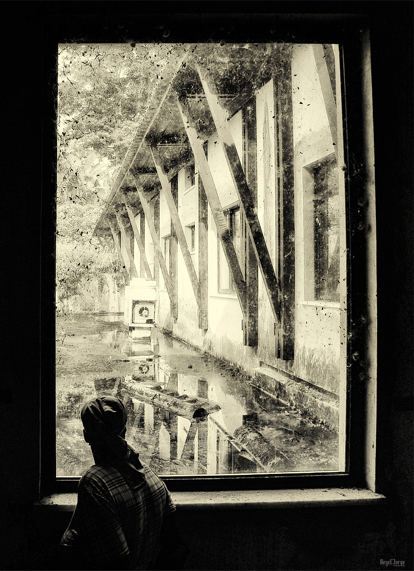 Photograph looking into the past by Hegel Jorge on 500px