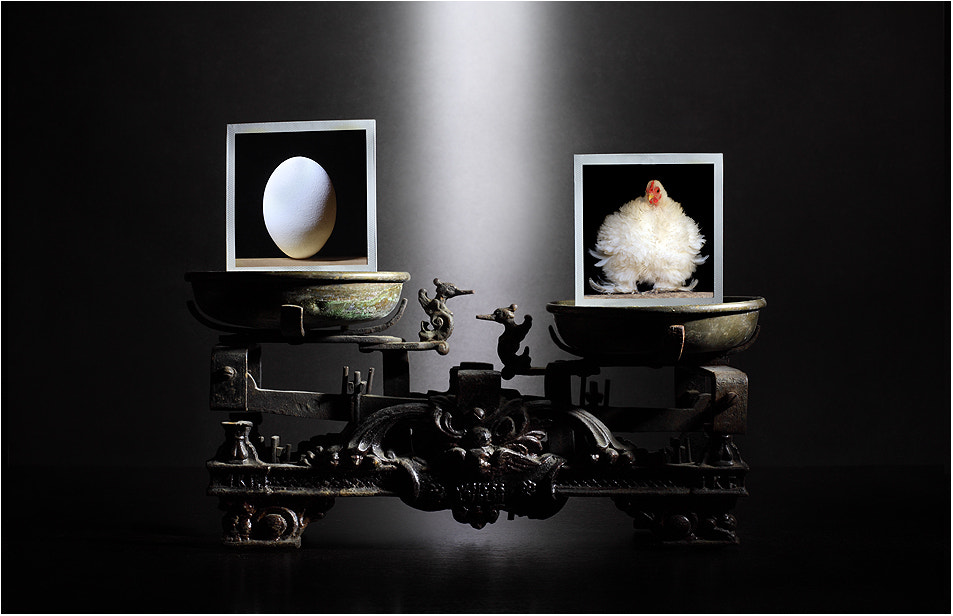 Photograph Chicken or the egg? by Victoria Ivanova on 500px