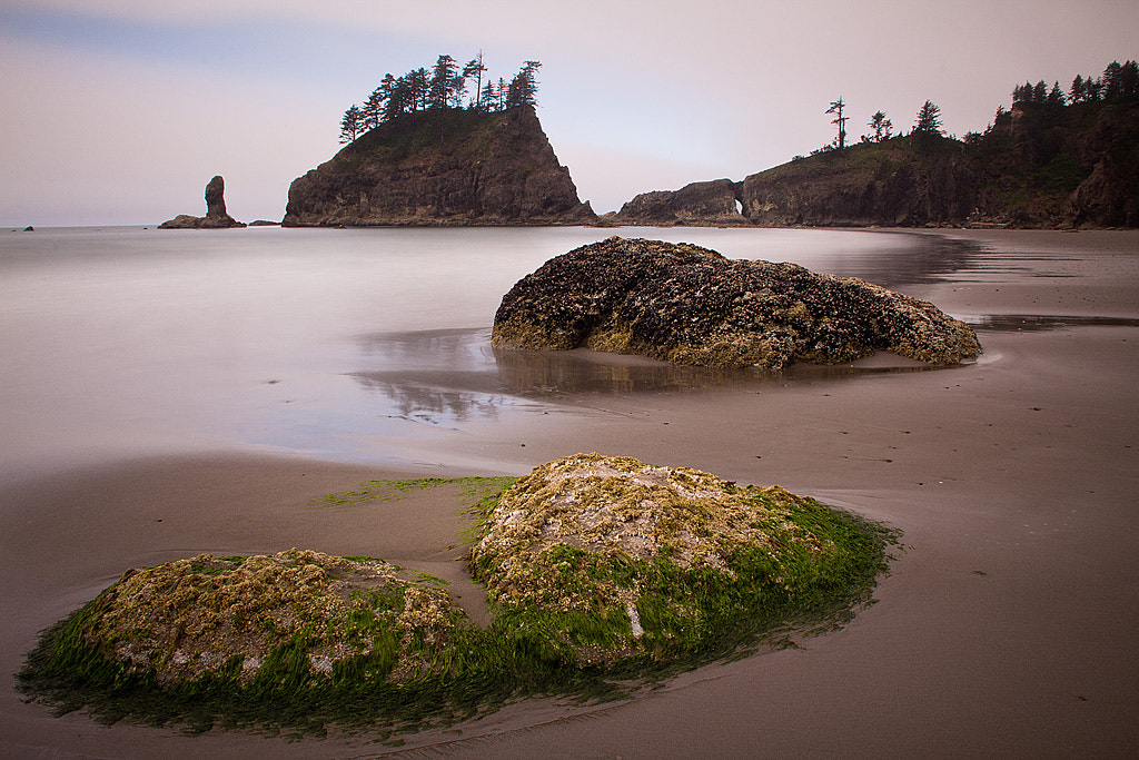 Photograph the pacific northwest by Roman Jott on 500px