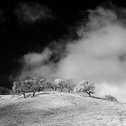 Coyote Creek hills this, Canon EOS D60
