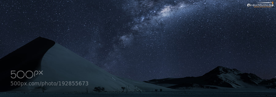 Namib under moonlight