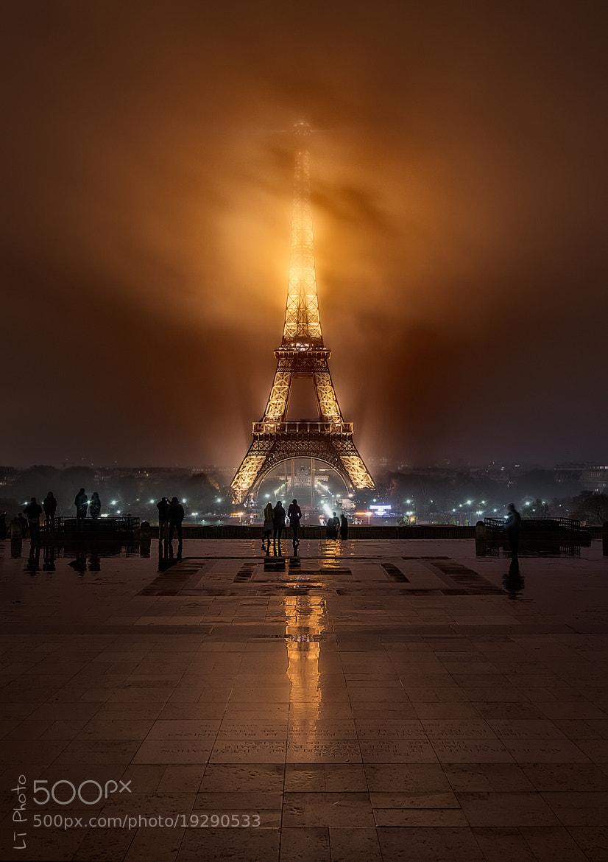 Photograph Foggy Night by Javier de la Torre on 500px