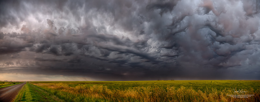 Wild Prairie by Ian McGregor on 500px.com