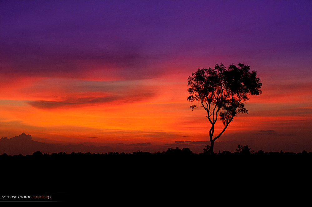 Photograph And I will wait for you till the morrow... by Sandeep somasekharan on 500px