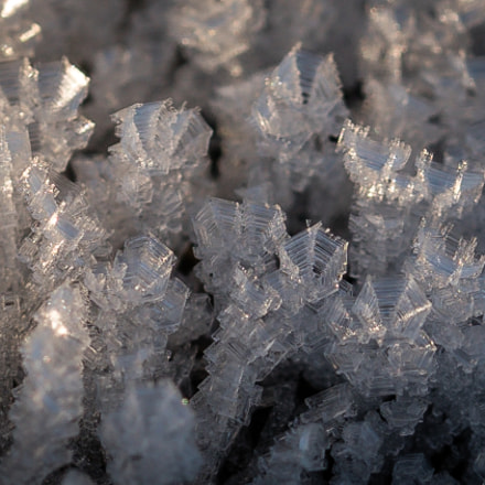 crystals, Sony ILCA-77M2, Tamron SP AF 60mm F2 Di II LD [IF] Macro 1:1