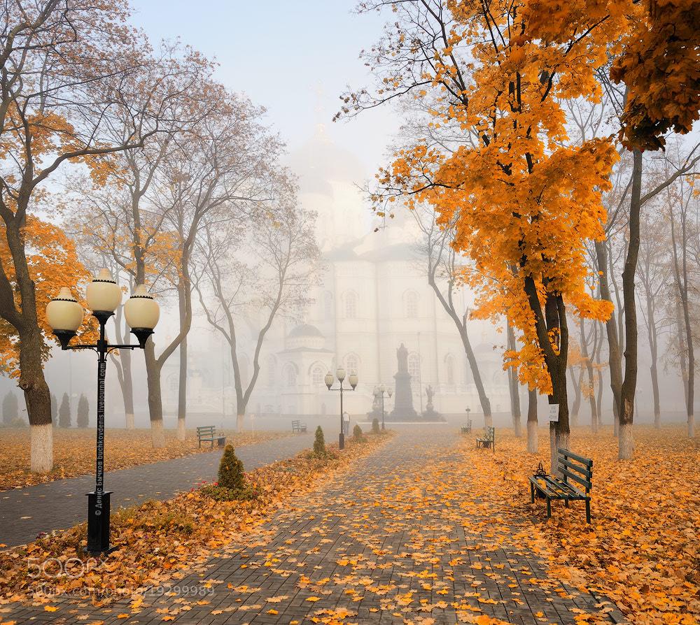 Photograph *** by Denis Bychkov on 500px