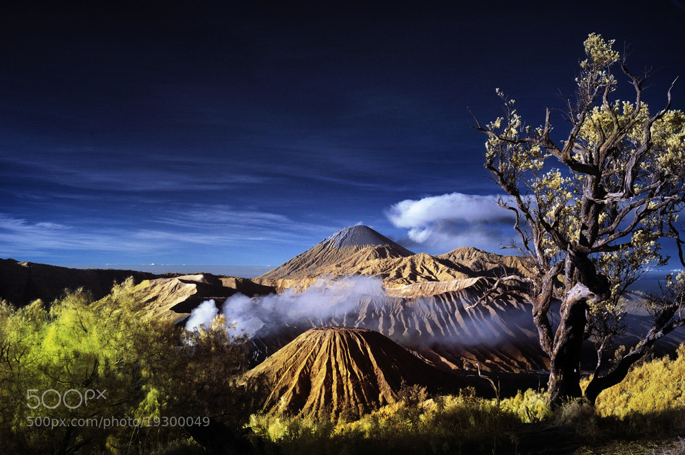 Photograph Mount Bromo#2 by Agus Gunawan on 500px