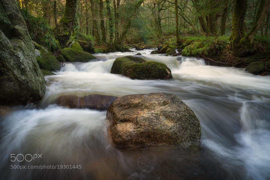 Photograph Golitha Falls, Cornwall by Marc Elliott on 500px