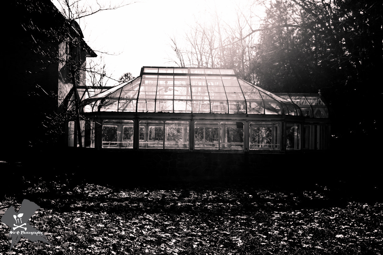 Photograph The Greenhouse by Sir G on 500px