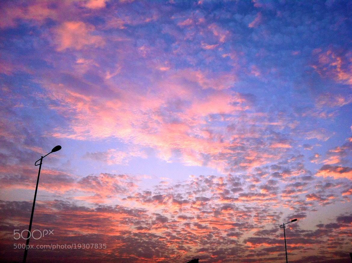 Photograph Good Evening. by Harsh Munjal on 500px