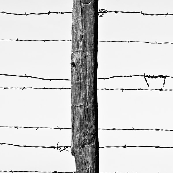 Fence, East Highway 51, Stillwater, Oklahoma, 2012
