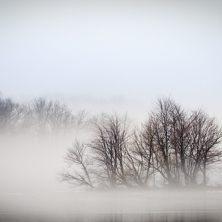 misty lake in the, Olympus E-M1, Lumix G X Vario PZ 45-175mm F4.0-5.6 Asph. Power OIS