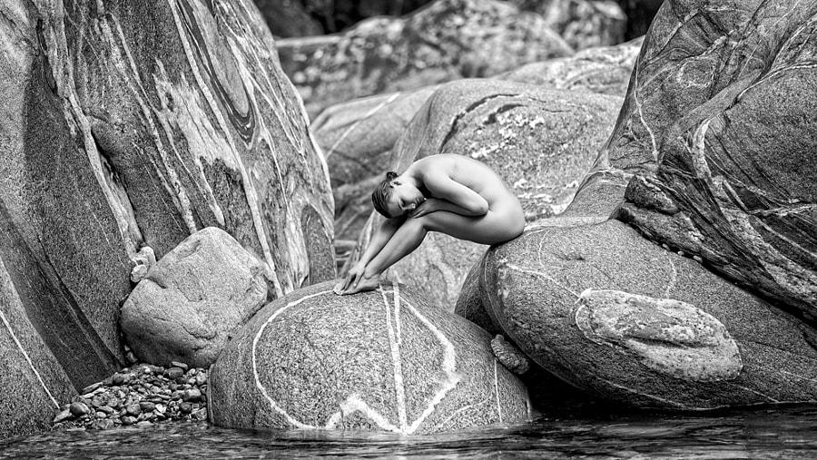 Beauty on rocks