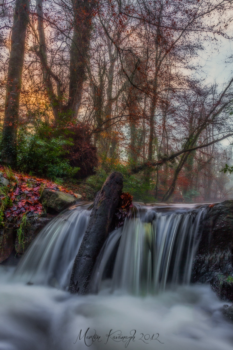 Photograph Waterlogged... by Martin Kavanagh on 500px