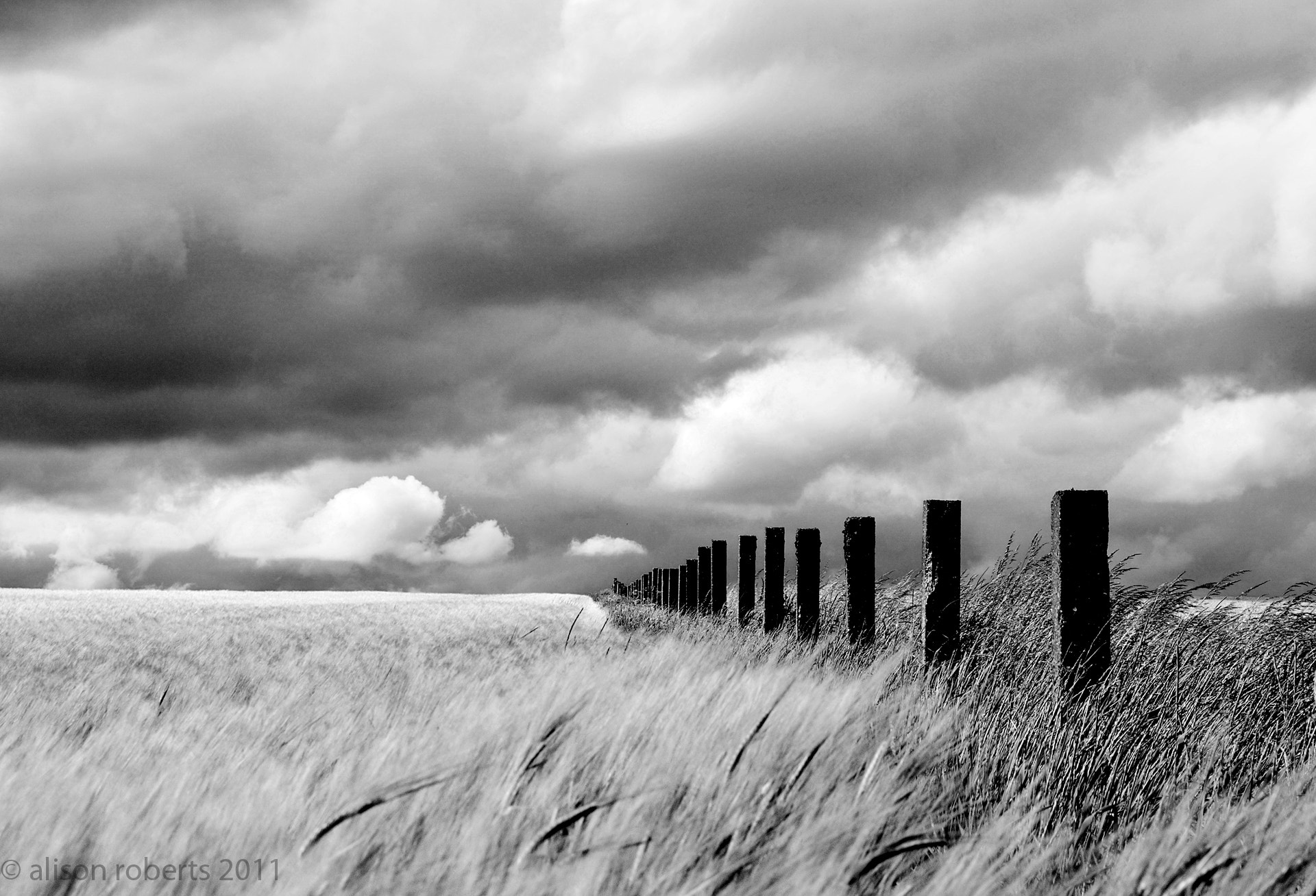 Photograph Infinitey by Alison Roberts on 500px
