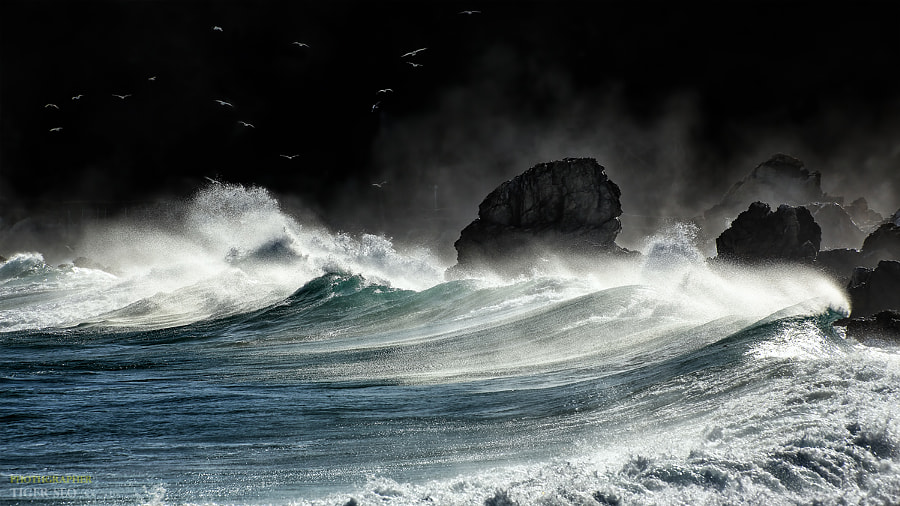 wave by Tiger Seo on 500px.com