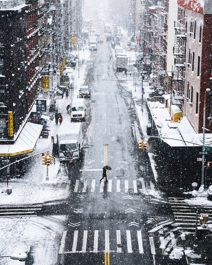 Snow days in NYC by Ryan Millier on 500px.com