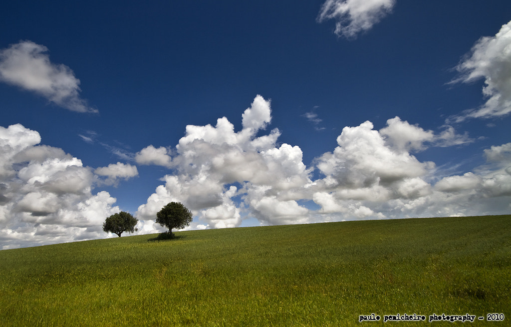 Photograph Two Little Sisters by Paulo Penicheiro on 500px