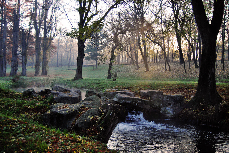 Photograph Late autumn morning by Dragos Ionescu on 500px
