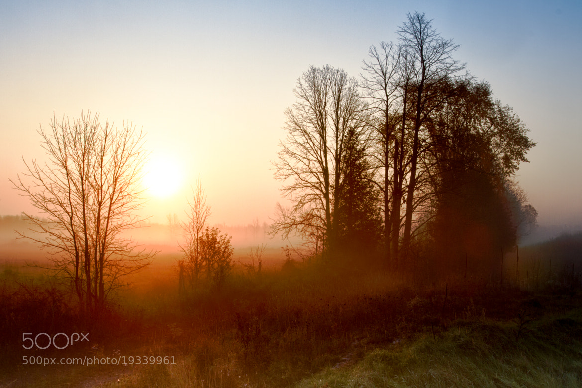 Photograph Misty Sunrise by Bruce Clement on 500px