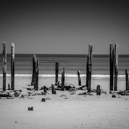 Weathered by the Sea, Nikon D610, AF-S VR Zoom-Nikkor 24-120mm f/3.5-5.6G IF-ED
