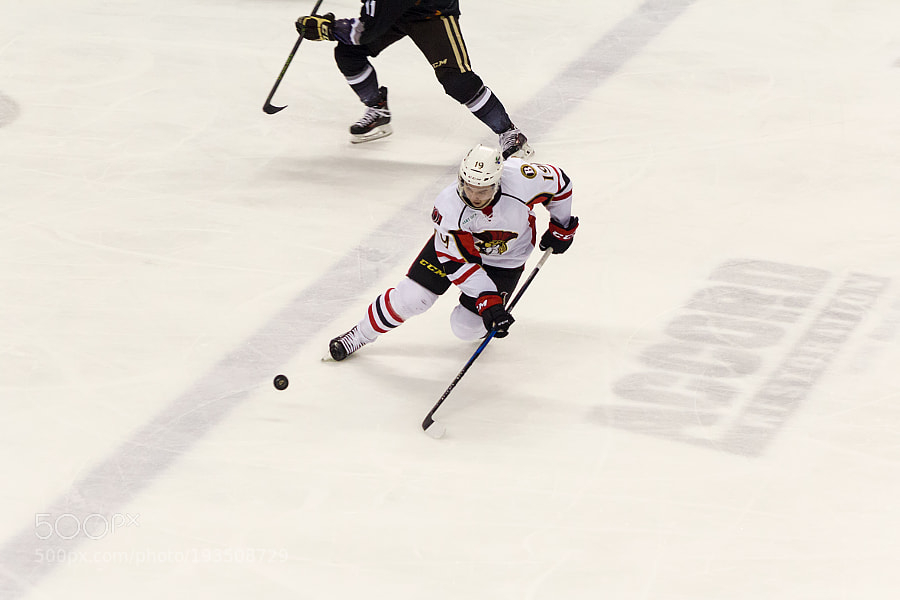 Hershey Bears vs Binghamton Senators