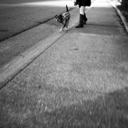 'Girl And Dog', Nikon COOLPIX L14