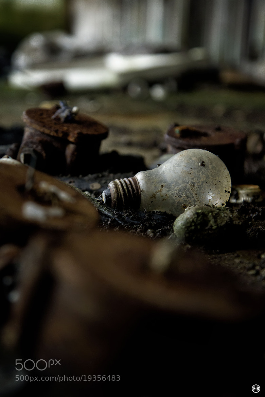 Photograph Bulb life by Flo Delabioteam on 500px