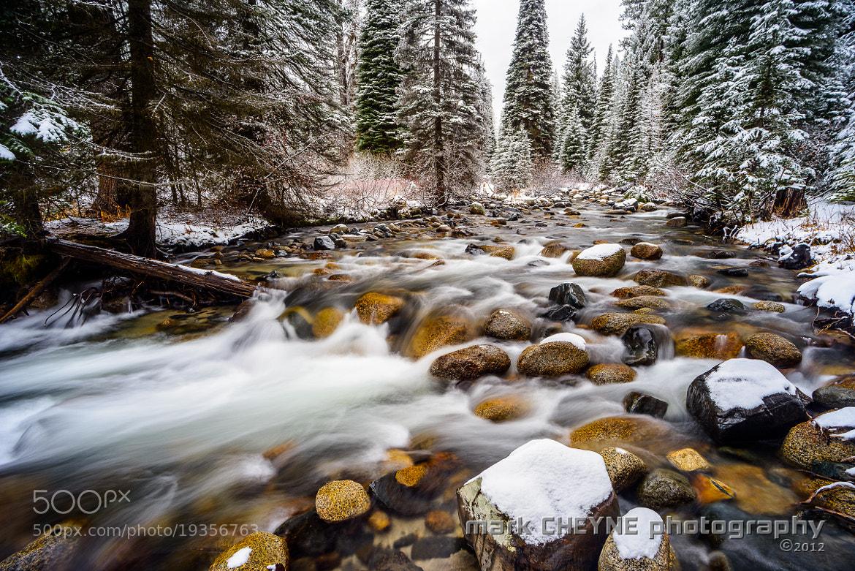 Photograph Winter Wonderland by Mark Cheyne on 500px