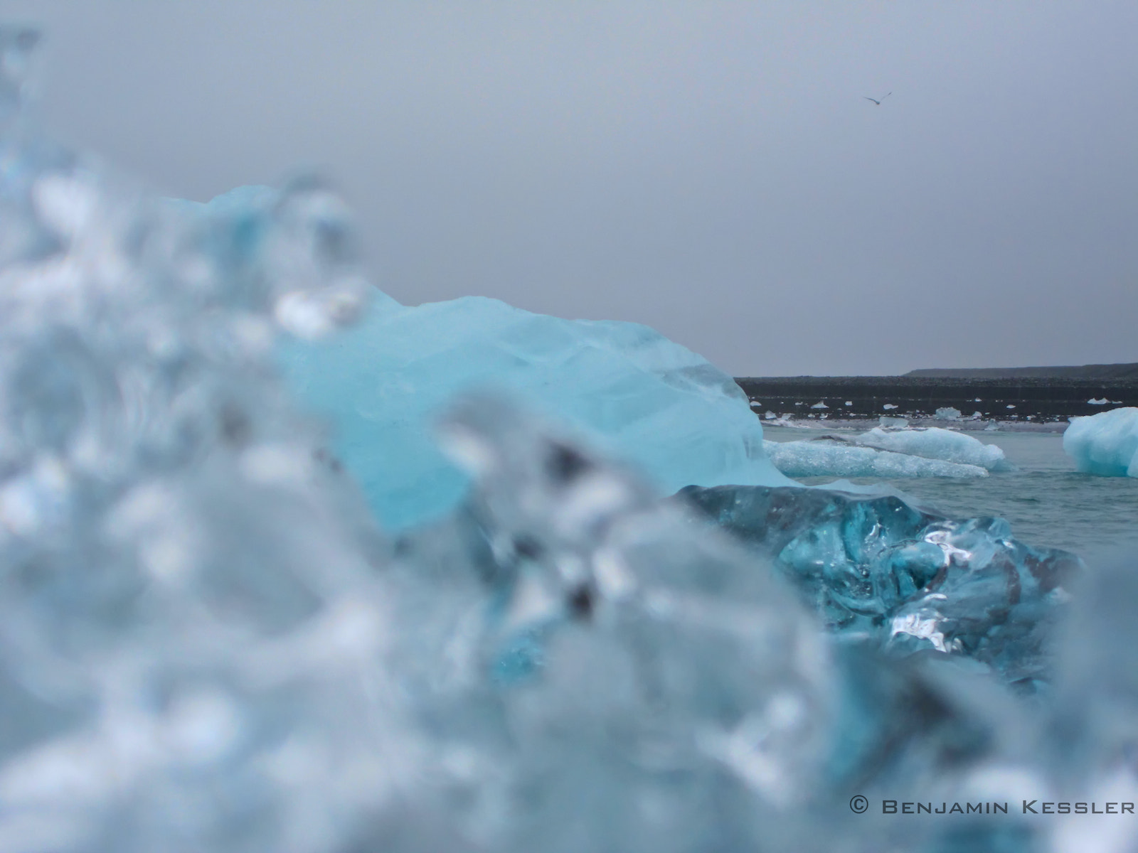 Photograph The beauty of Ice by Benjamin Kessler on 500px