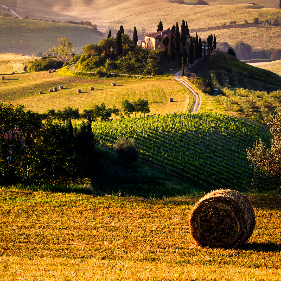 Photograph Podere Belvedere by Francesco Riccardo Iacomino on 500px